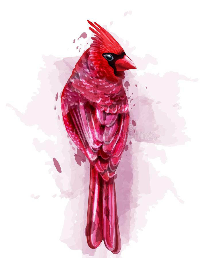 Huvudsaklig röd fågelvattenfärgvektor isolerat på vita illustrationer stock illustrationer
