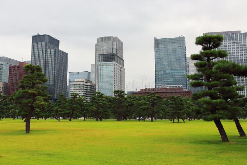 Huvudsaklig sikt av stadshorisont från den fantastiska trädgården nästan den imperialistiska slottingången, Tokyo, Japan arkivfoto