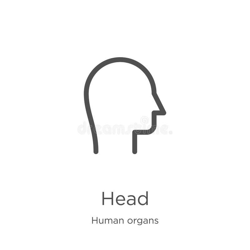 huvudsymbolsvektor från samling för mänskliga organ r Översikt tunn linje huvudsymbol för royaltyfri illustrationer