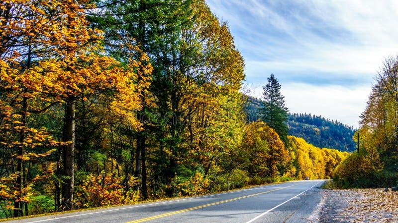 Huvudväg 7, den Lougheed huvudvägen nära bosättningen av Deroche i nedgång färgar i Fraser Valley royaltyfri foto