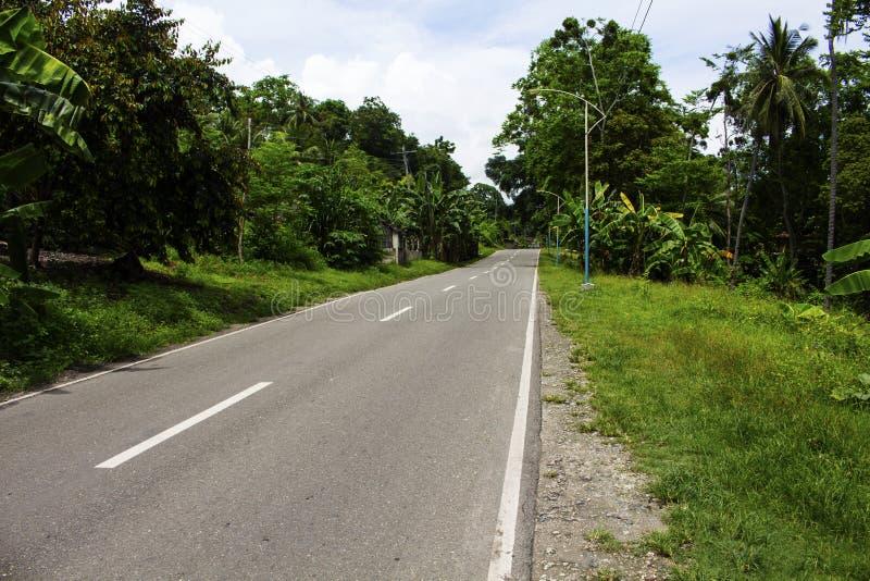 Huvudväg på den tropiska ön Tom väg vid djungeln arkivfoto