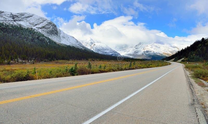 Huvudväg till och med de kanadensiska steniga bergen längs den Icefields gångallén mellan Banff och jaspisen royaltyfri fotografi