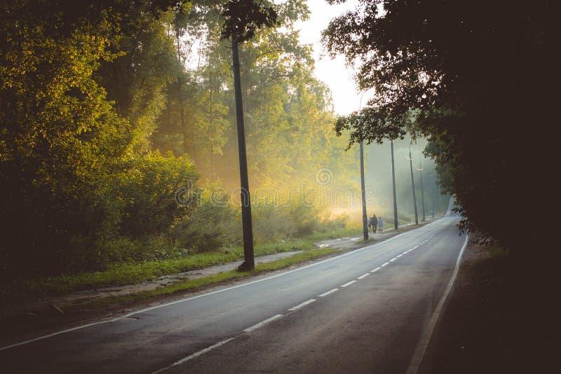 Huvudvägar och avdunstning efter regn royaltyfria foton