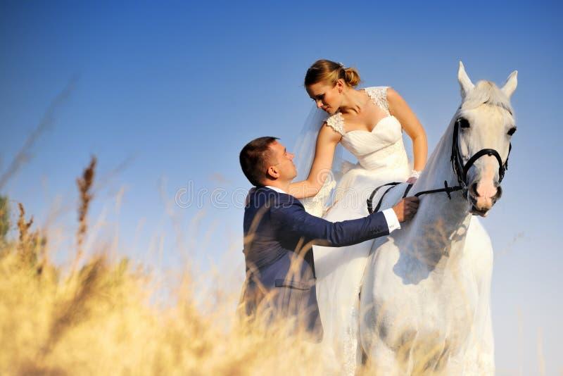 Huwelijk Bruid en bruidegom met wit paard stock foto's