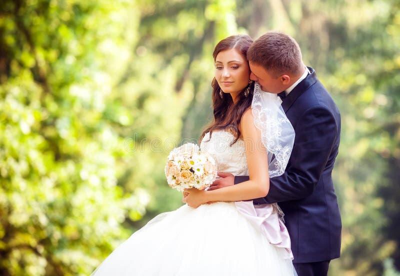 Huwelijk van bruid en bruidegom wordt geschoten die stock fotografie