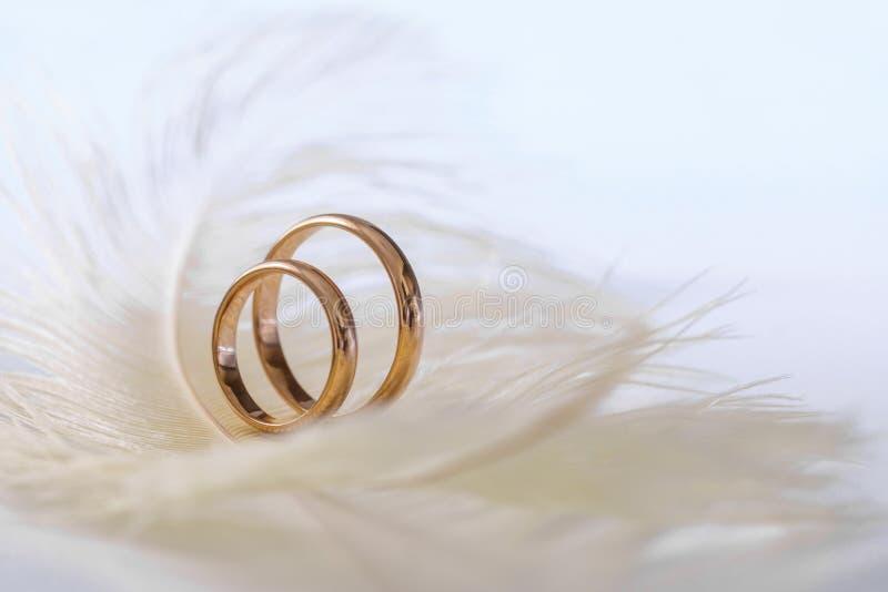 Huwelijks gevoelige achtergrond met ringen en veer Tederheid, teder liefdeconcept stock afbeelding