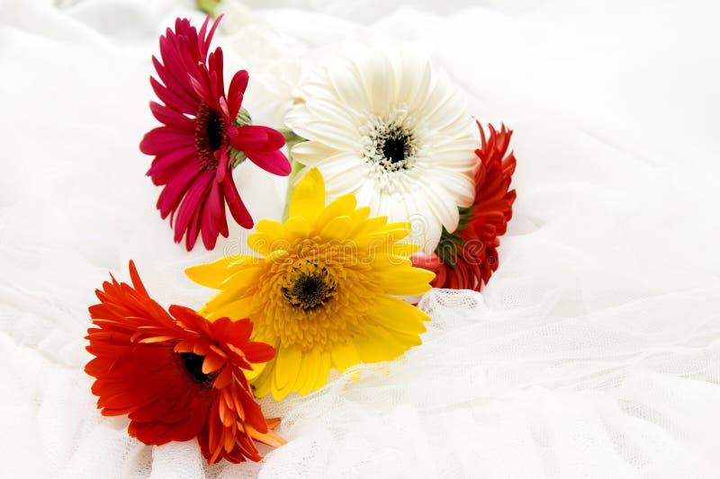 Huwelijksbloemen stock foto's