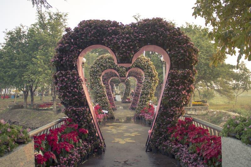 Huwelijksgang in openbaar park stock fotografie