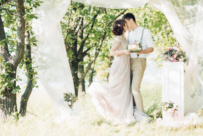 Huwelijkspaar op aard bruid en bruidegom met cake bij huwelijk royalty-vrije stock afbeelding