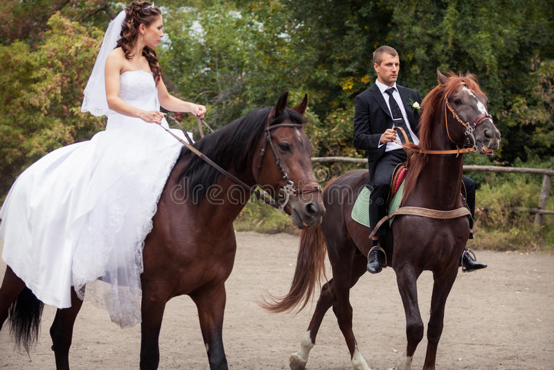 Huwelijkspaar op paarden stock foto's