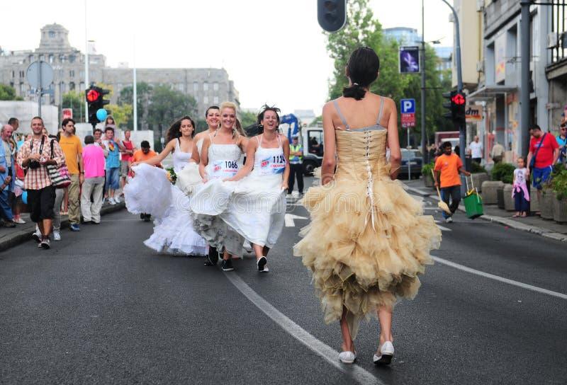 Huwelijksras, Belgrado royalty-vrije stock fotografie