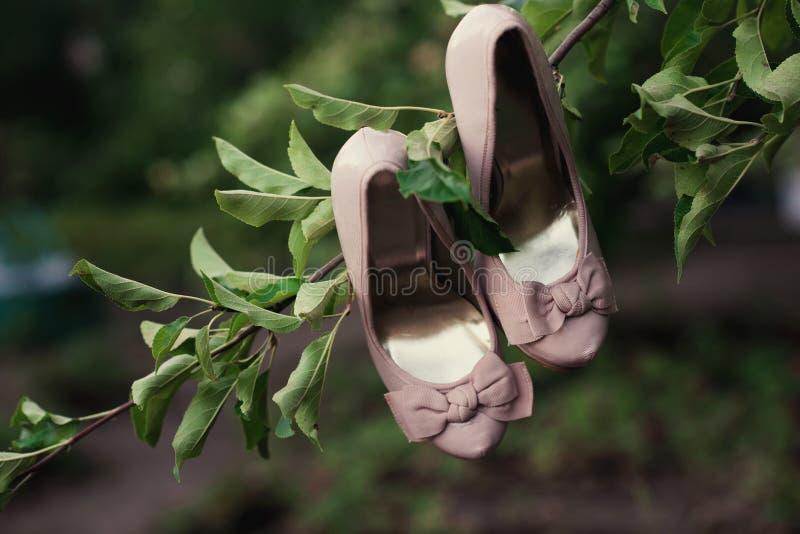 Huwelijksschoenen die op een boom in het park hangen royalty-vrije stock foto