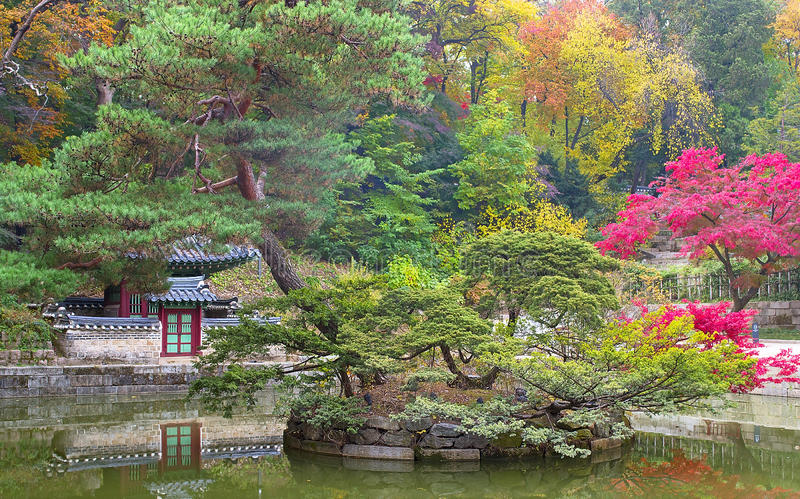 Huwon公园的Buyeongji池塘,神秘园,昌德宫宫殿 库存图片