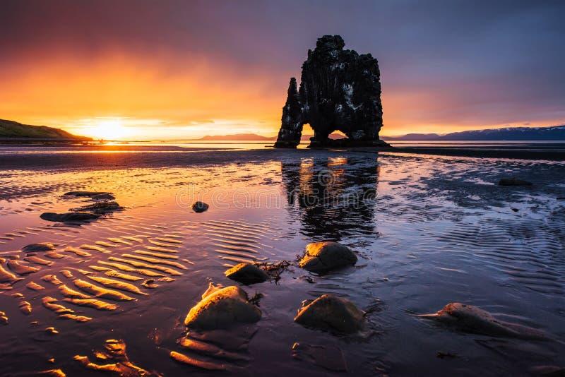 Hvitserkur är en spektakulär rock i havet på den nordliga kusten av Island Legender säger att den är ett förstenat fiska med drag royaltyfri bild