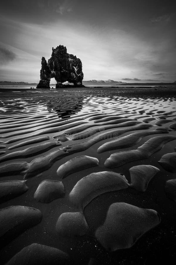 Hvitserkur i Island arkivfoto