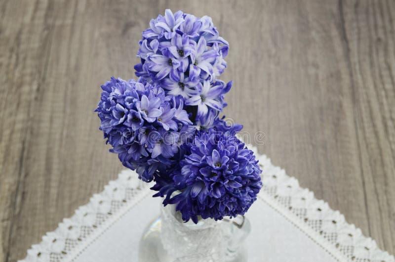 Hyacintblommor arkivfoton