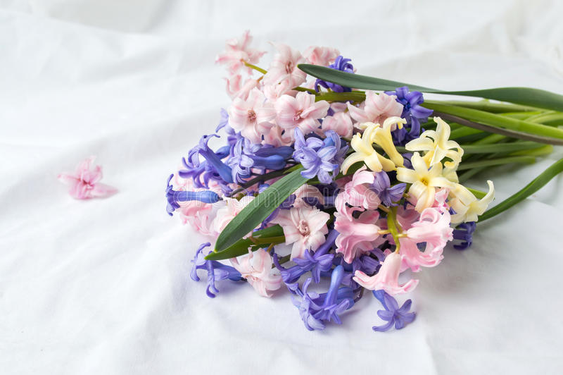 Hyacinth Flowers Bouquet On White Fabric Stock Photo - Image of ...