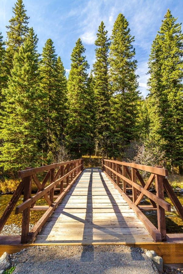 Hyalite-Nebenfluss-Brücke lizenzfreie stockfotos