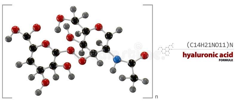 Hyaluronic acid chemical formula, molecule structure, medical illustration. royalty free illustration