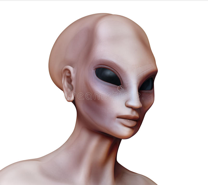 Download Hybrid Alien Woman Side View On White Stock Illustration - Illustration of nephilim, face: 73577586