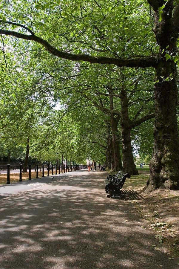 hyde London park zdjęcie royalty free