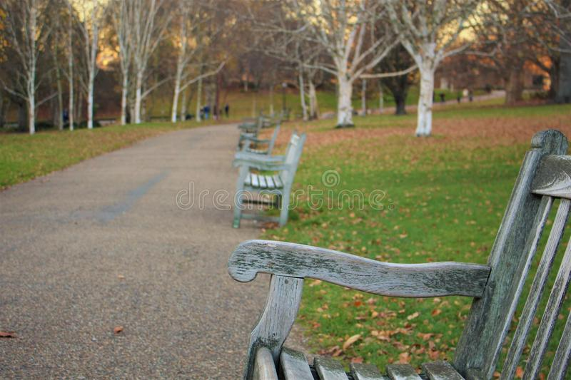 hyde park obraz royalty free