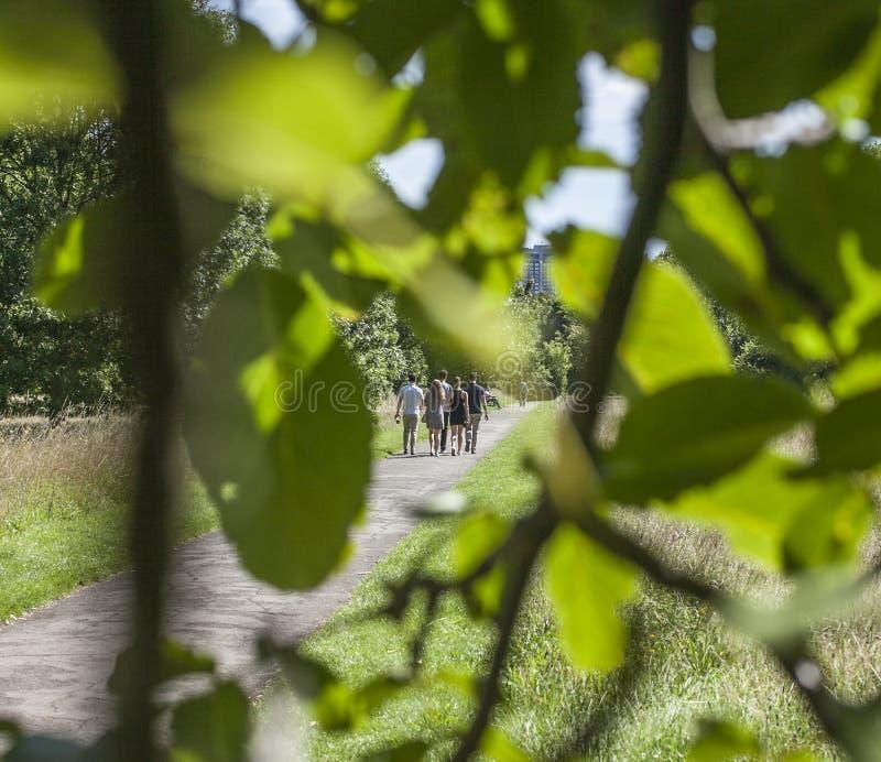 In Hyde Park - een piepgeluid toont royalty-vrije stock fotografie