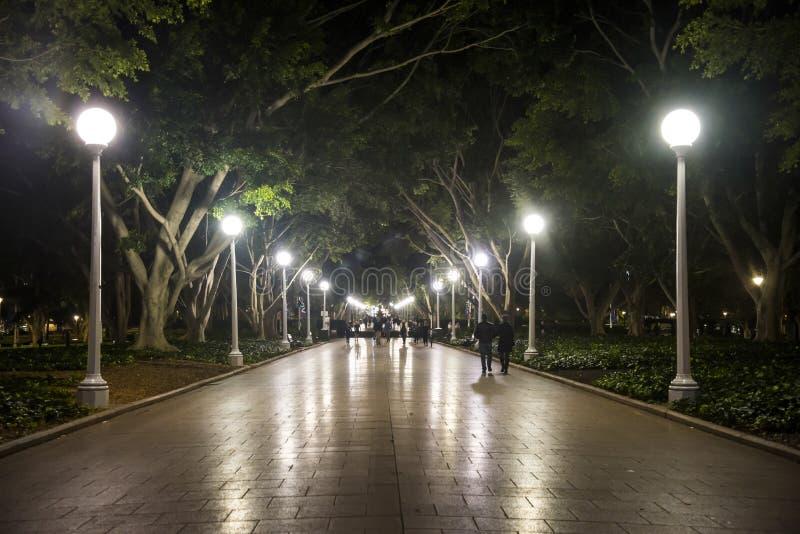 Hyde Park la nuit, Sydney, Australie image libre de droits