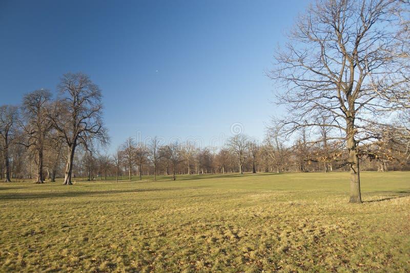 Hyde Park, London Royalty Free Stock Image