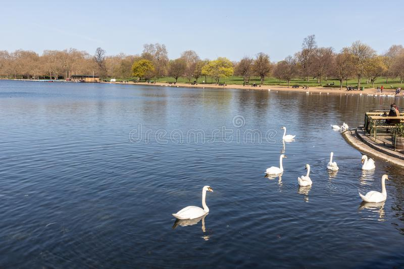 Hyde Park in London, England royalty free stock image