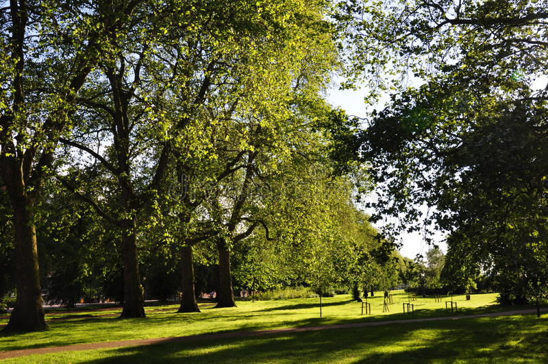 Download Hyde Park - London, UK stock photo. Image of great, forest - 25439652