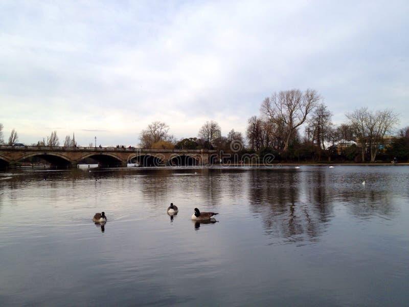 Hyde Park Serpentine London stockfotografie