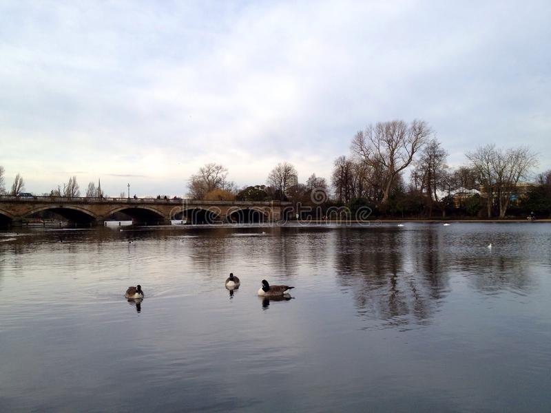 Hyde Park Serpentine Londra fotografia stock