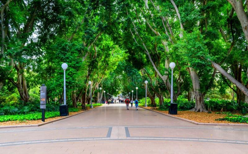 Hyde Park, Sydney, Australie photographie stock libre de droits