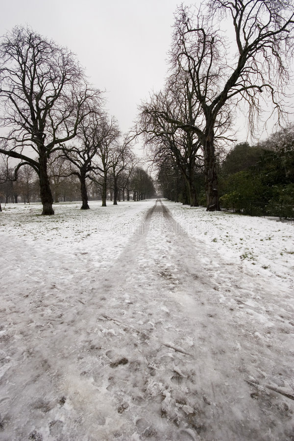 Hyde park in winter stock images