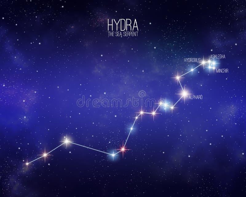 Hydra a constelação da serpente de mar em um fundo estrelado do espaço ilustração royalty free