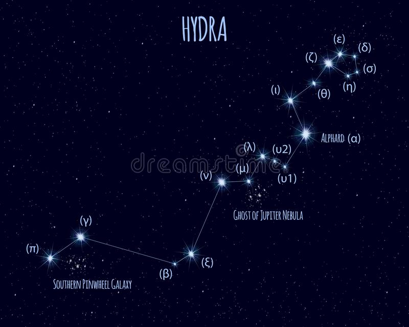 Hydra constellation, vector illustration with the names of basic stars vector illustration