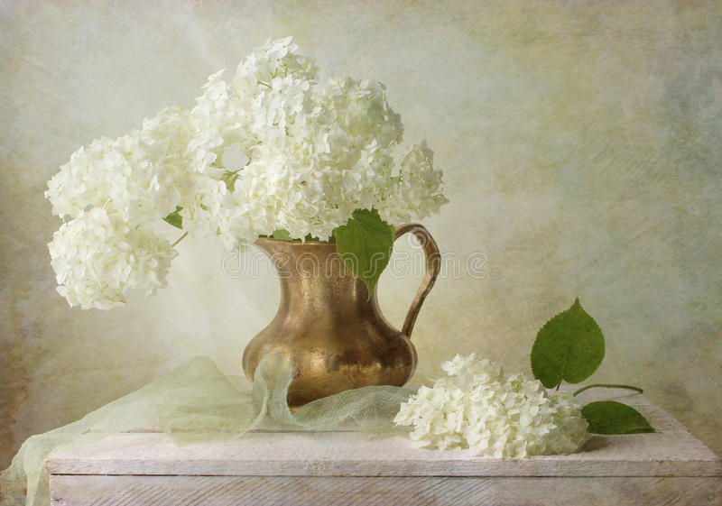 hydrangea στοκ φωτογραφίες