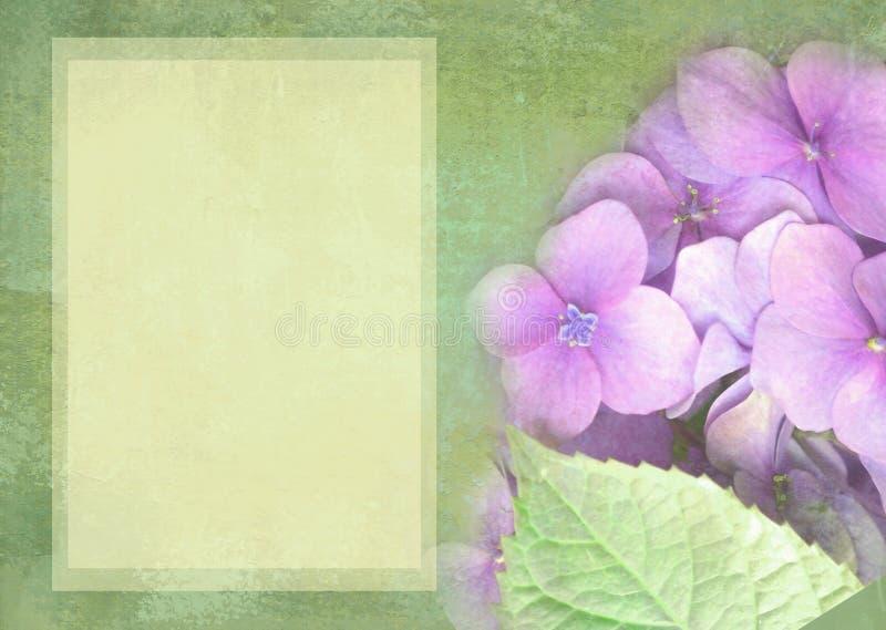 Hydrangea hortensia bloemenprentbriefkaar Kan als groetkaart, uitnodiging voor huwelijk, verjaardag en andere vakantie het gebeur royalty-vrije illustratie