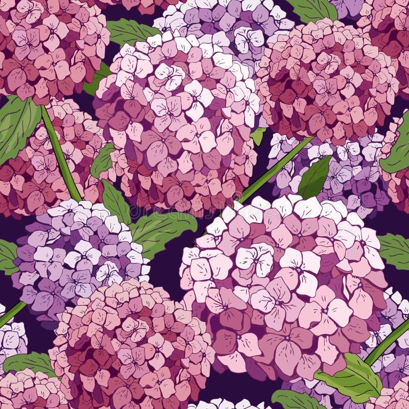 Hydrangea-nahtloses Muster Vektorhandgezogene Beschaffenheit mit Blumen Botanik, die Tapete wiederholt Rosa Schablonenabdeckungsg vektor abbildung