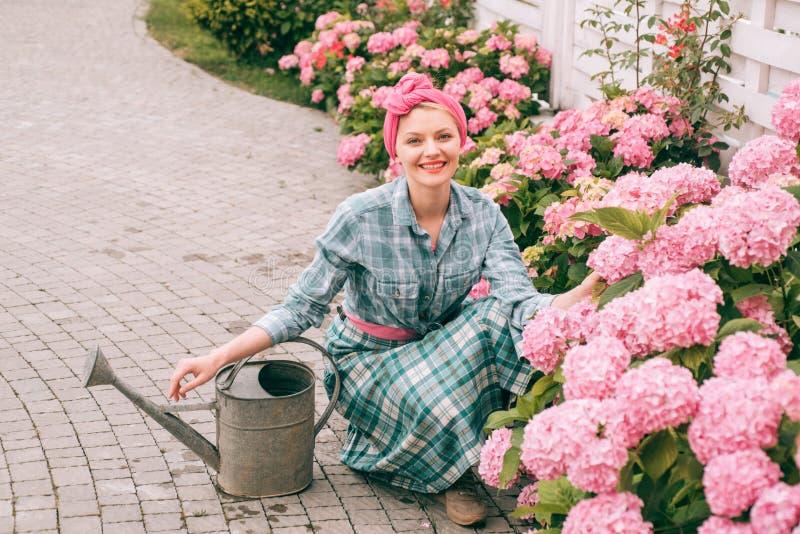hydrangea Ressort et été jardinière heureuse de femme avec des fleurs Soin et arrosage de fleur sols et engrais Femme photos stock