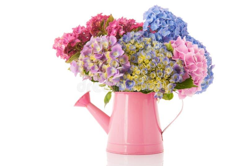 Hydrangea rose et bleu de bouquet images stock