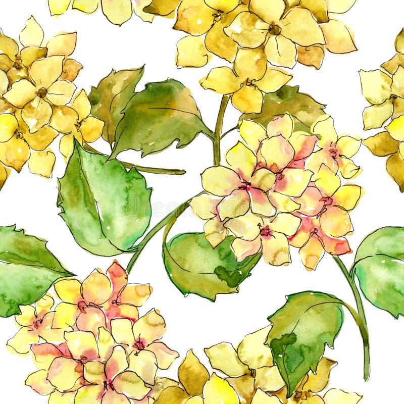 Hydrangeas coloridos Flor botánica floral Modelo inconsútil del fondo stock de ilustración
