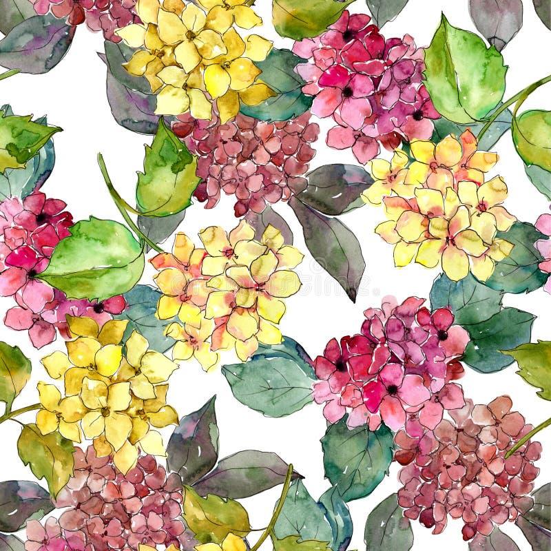 Hydrangeas coloridos Flor botânica floral Teste padrão sem emenda do fundo ilustração royalty free