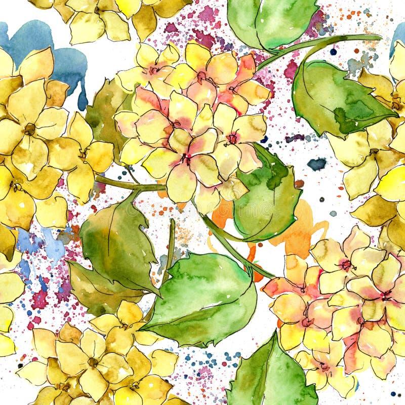 Hydrangeas variopinti Fiore botanico floreale Modello senza cuciture del fondo illustrazione di stock