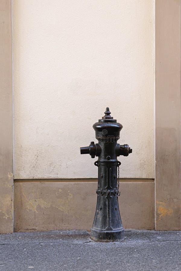 hydrant imagem de stock royalty free
