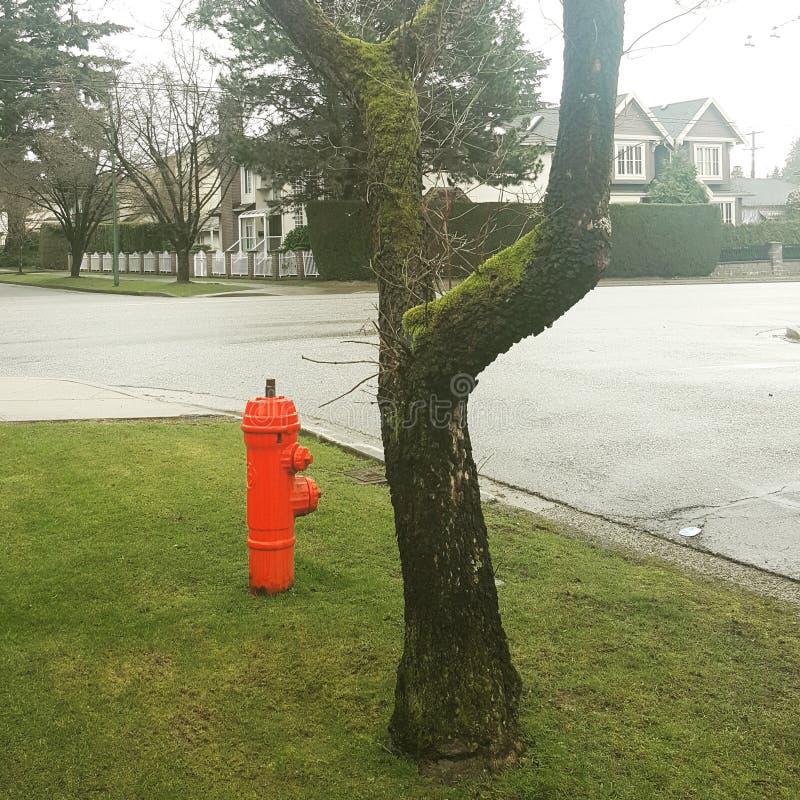 hydrant lizenzfreies stockfoto