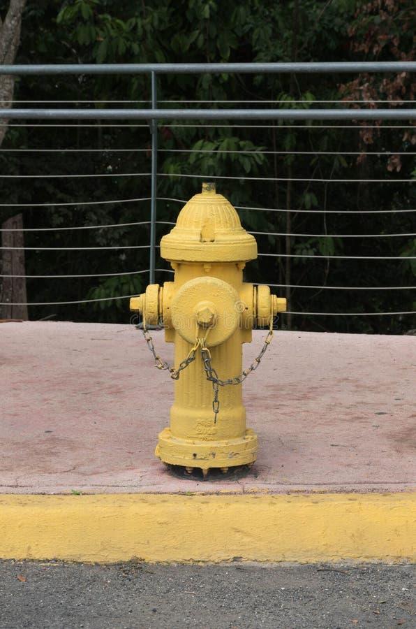 Hydrant Fireplug lizenzfreie stockfotos