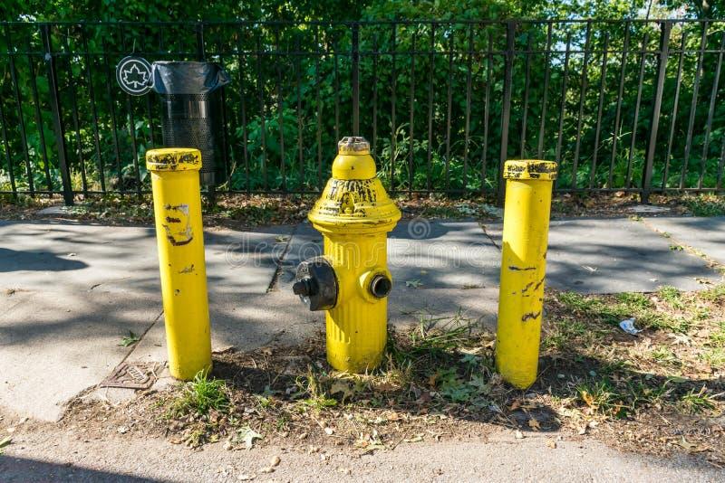 Hydrant Fireplug stockfotos