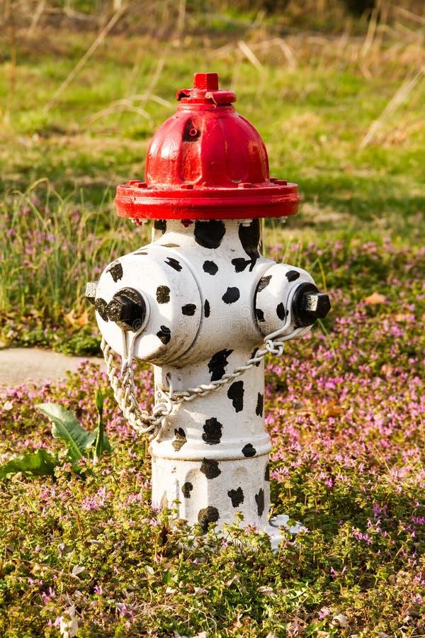 Hydrant mit Dalmations-Stellen stockfoto